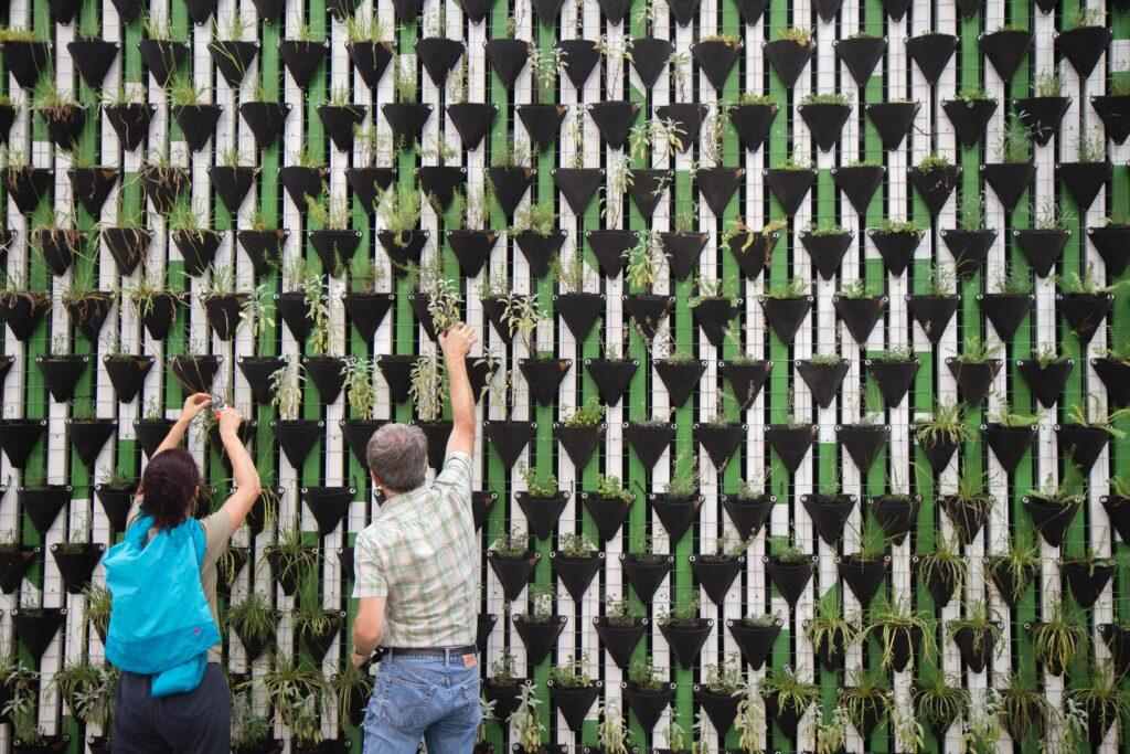 pessoas colaborando com iniciativa de inovação social em jardim vertical